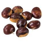 Natoora Chestnuts