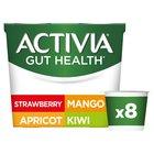 Activia Fruit Yogurts Summer Specials Variety Pack