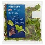 Chard & Babyleaf Salad Waitrose
