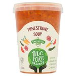 Tideford Organic Minestrone with Gluten Free Pasta